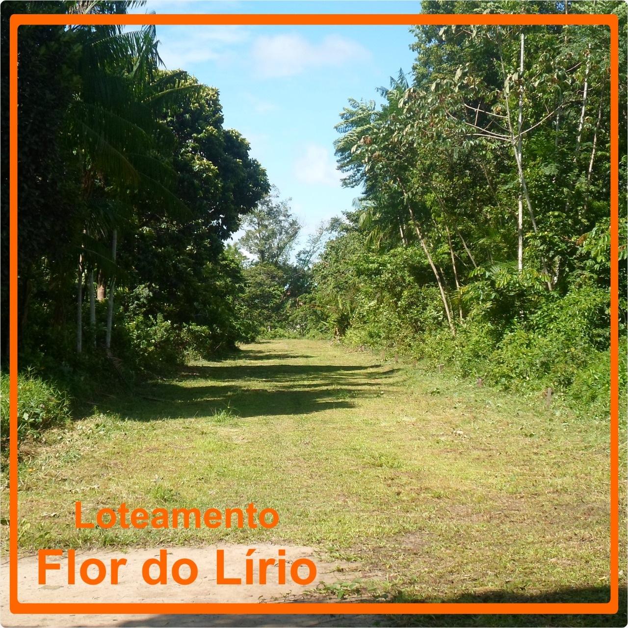 Poupança-ou-Terrenos?-Aplicar-Loteamento-Flor-do-Lirio-Terrenos-lotes-Parreira Corretor-em-Ananindeua-Pará